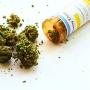 Michael Lamson-Types of Drug Cases-possession of medical marijuana-2_1